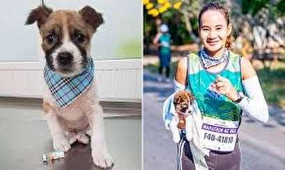 Marathon runner finds puppy, carries it 19 miles