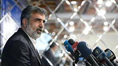 Iran's enrichment capacity to hit pre-JCPOA level: AEOI spokesman