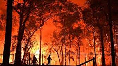 Bushfires continue to burn in Australia, smoke blanketing Sydney