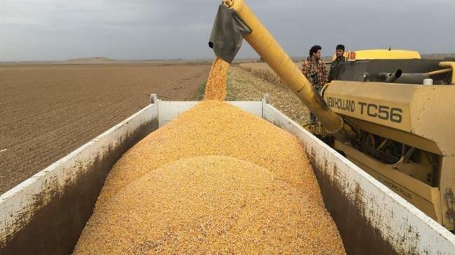 Iran's wheat autarky on track despite severe floods