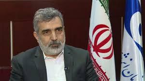 Iran's enriched uranium stockpile exceeds 360kg: AEOI
