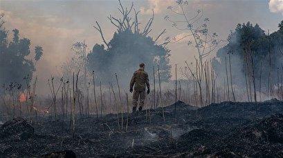 Amazon fires 'extraordinarily concerning', warns UN biodiversity chief