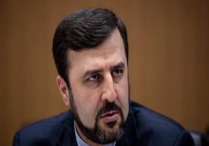 Iran's nuclear program transparent: Envoy