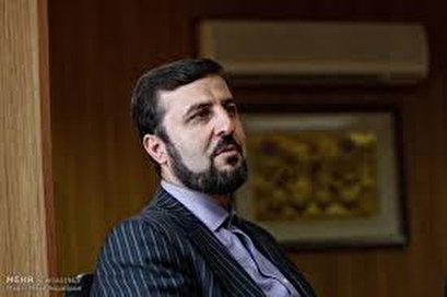 Envoy condemns UAE, Israeli accusations against Iran at IAEA conf.