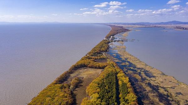 Golden banks of Xingkai Lake in NE China