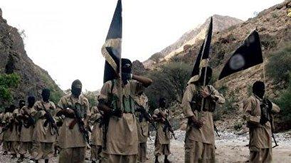 Saudi-led coalition, mercenaries working with al-Qaeda, Daesh in Yemen: Foreign Ministry