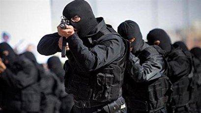 Intelligence Min.: Jaish ul-Adl terrorist leader killed in southeastern province