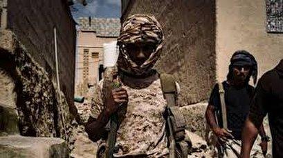Daesh, al-Qaeda conducted 320+ attacks in Yemeni province in 5 years: Ministry