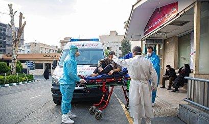 COVID-19 in Iran: Daily Death Toll Surpasses 200