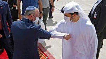 UAE-Israel deal to normalize ties only serves Trump, Netanyahu: Senior Hamas leader