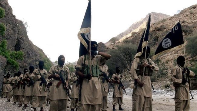 Yemeni intelligence agency details terror activities of Qaeda leaders, operatives in Ma'rib