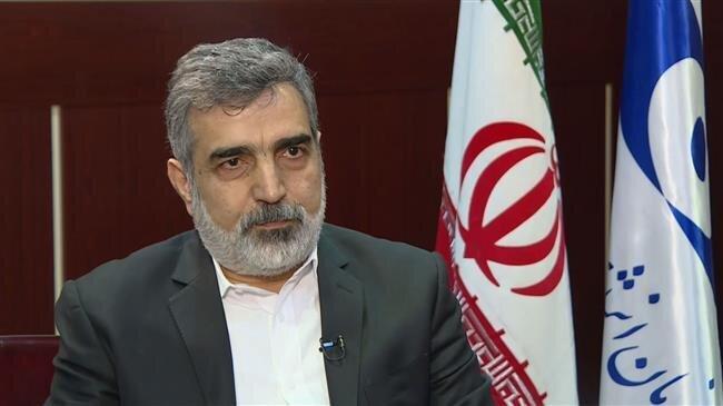 AEOI Spox: Iran's %20 enriched uranium stock hits 55kg