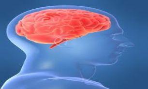 سیگنال های مغزی