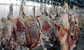 توزیع ۴ میلیون کیلوگرم گوشت قرمز منجمد/ عرضه مستقیم تا پایان فروردین ماه ادامه داد