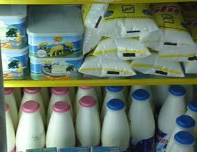 قیمت شیر و ماست