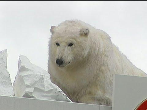 جفتري خرس قطبي DÜNYADAN İLGİNÇ FOTOĞRAFLAR 2 KASIM / 126 - Foto Haber Galeri