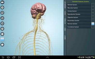 آناتومی بدن انسان را به صورت سه بعدی مشاهده کنید+دانلود 1019855_163