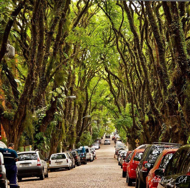 زیباترین خیابان جهان + تصاویر