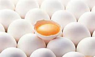 """""""تخممرغ"""" شانهای ۹۵۰۰ شد!"""