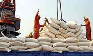 """افزایش ۶۷ درصدی """"واردات"""" """"برنج"""""""