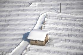 آخرین وضعیت توزیع کالا در روستاهای برفزده