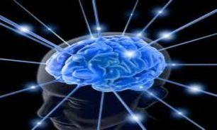 کنجکاوی مغزتان را بزرگ می کند!