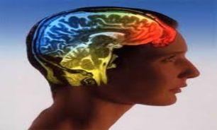 محققان قسمتی از مغز آسیب دیده از ترسیم کردند