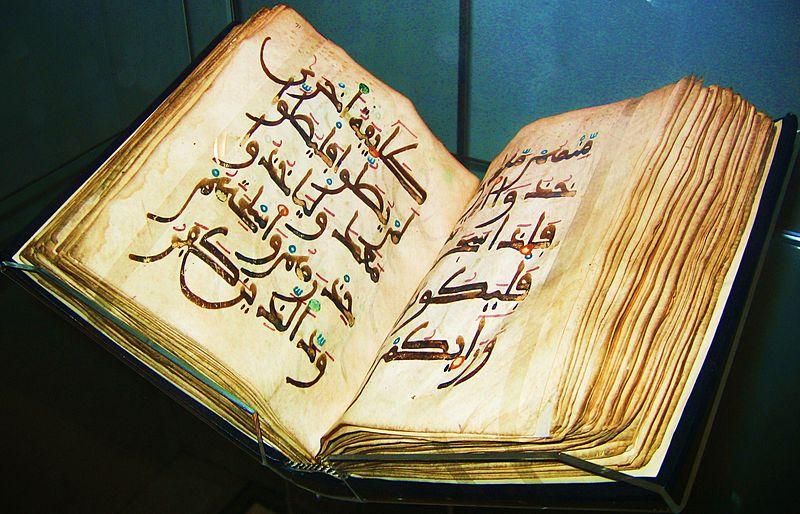 هر شب با قرآن/ مهم ترین نکته در آفرینش انسان