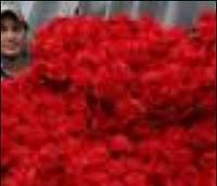 چند گام تا بهره برداری از بازار گل خاوران