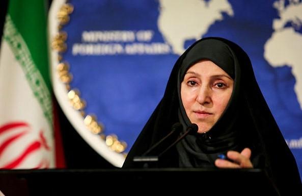 افخم: جمهوری اسلامی خواستار محو کامل سلاحهای شیمیایی از سطح منطقه و جهان است