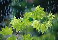 """ورود """"موج تازه بارشی"""" به کشور/تهران اواسط هفته بارانی میشود"""