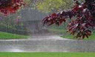 سامانه بارشی در اغلب مناطق کشورهمچنان پایدار است