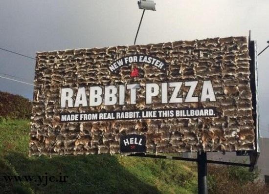 تابلویی ساخته شده از خرگوش مرده! +عکس