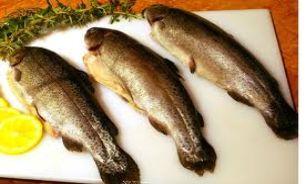 دنیای پزشکی و طب سنتی - تیغ ماهی در گلو, تیغ ماهی بافتنی, تیغ ماهی, تیغ ماهی بافت, تیغ ماهی گلو, تیغ ماهی در خواب, تیغ ماهی به انگلیسی, تیغ ماهی مو, تيغ ماهي در گلو, تيغ ماهي, آموزش خارج کردن تیغ ماهی از گلو کودک