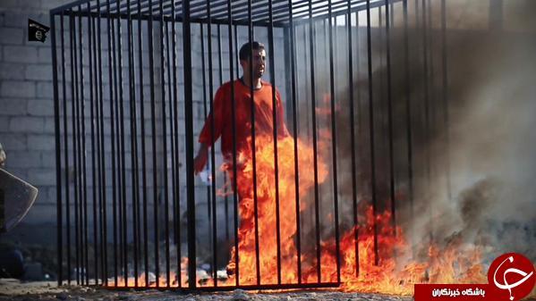 داعش خلبان اردنی را سوزاند+تصاویر
