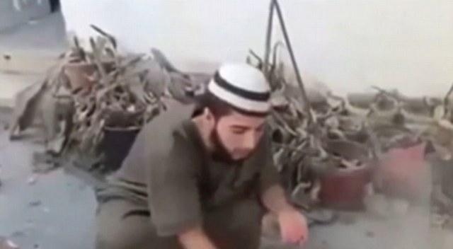 2950466 219 احمق ترین داعشیها