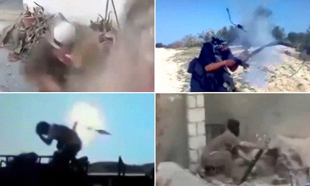 2950561 812 احمق ترین داعشیها