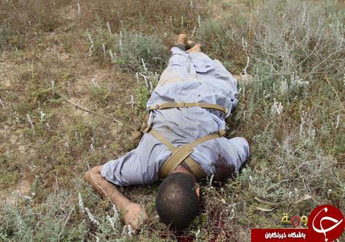 پسرعموی «ابوبکر البغدادی» در تکریت به هلاکت رسید