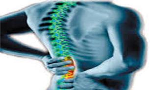 3025412 867 زنان بیشتر از مردان دچار ضعف عضلات بدن میشوند