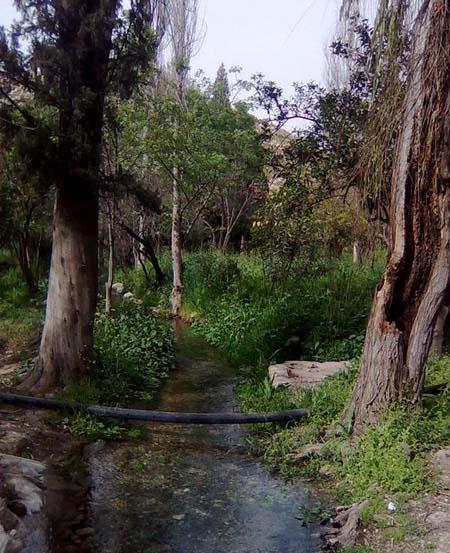 چشمه بلقیس چرام بهشتی در کهگیلویه و بویراحمد + عکس