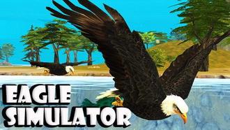 دانلود کنید: شبیه سازی واقع گرایانه از زندگی یک عقاب