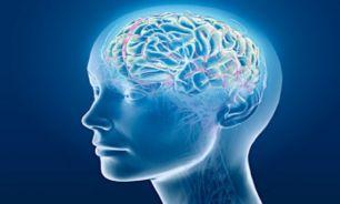 """روانشناسی: """"باهوشها"""" کمتر زحمت میکشند!"""