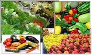 قیمت انواع میوه در میادین/ پسته تازه کیلویی ۱۶ تا ۲۰ هزار تومان