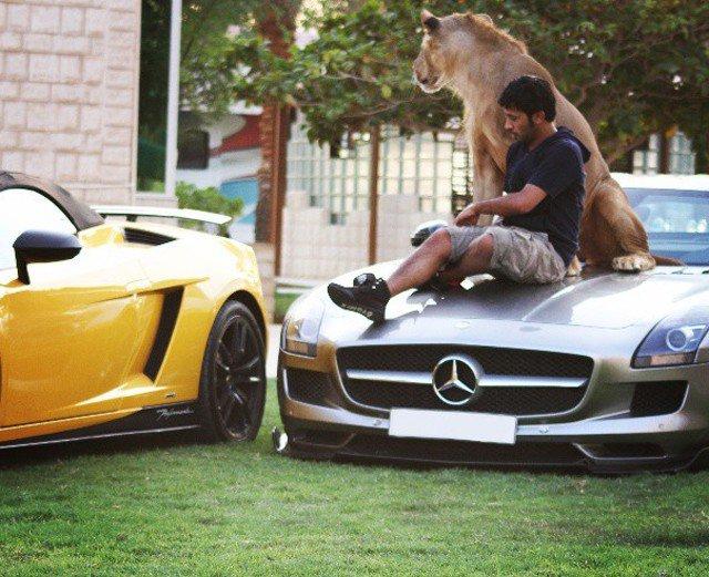 حیوانات خانگی یک شاهزاده اماراتی!+عکس