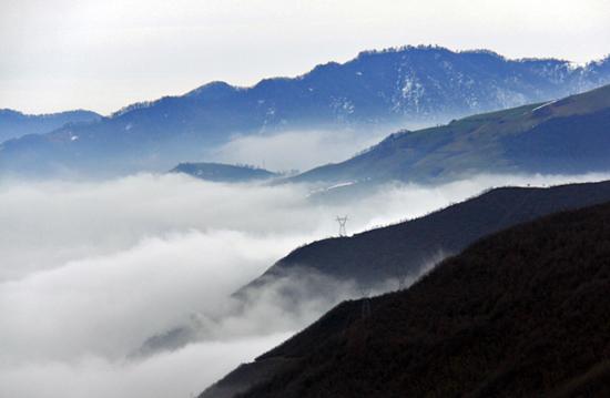 دیدنیترین جاده جنگلی ایران + تصاویر