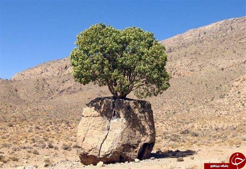 تصاویری از سنگ صبور استان فارس