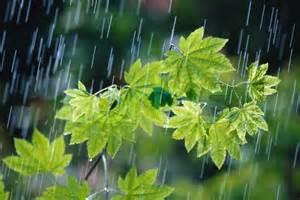 %name کاهش 5 درصدی بارندگی ها دراستان زنجان