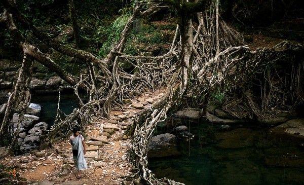۳۰ گذرگاه عجیب دنیا + عکس
