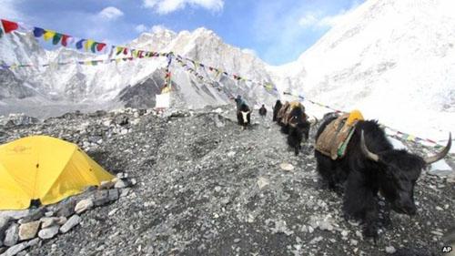 دوباره زمان صعود به بلندترین قله جهان فرا رسید
