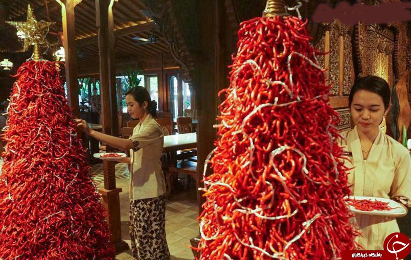 برگزاری کریسمس بادرخت فلفلی در اندونزی+عکس